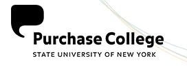 art institute of pittsburgh admission essay